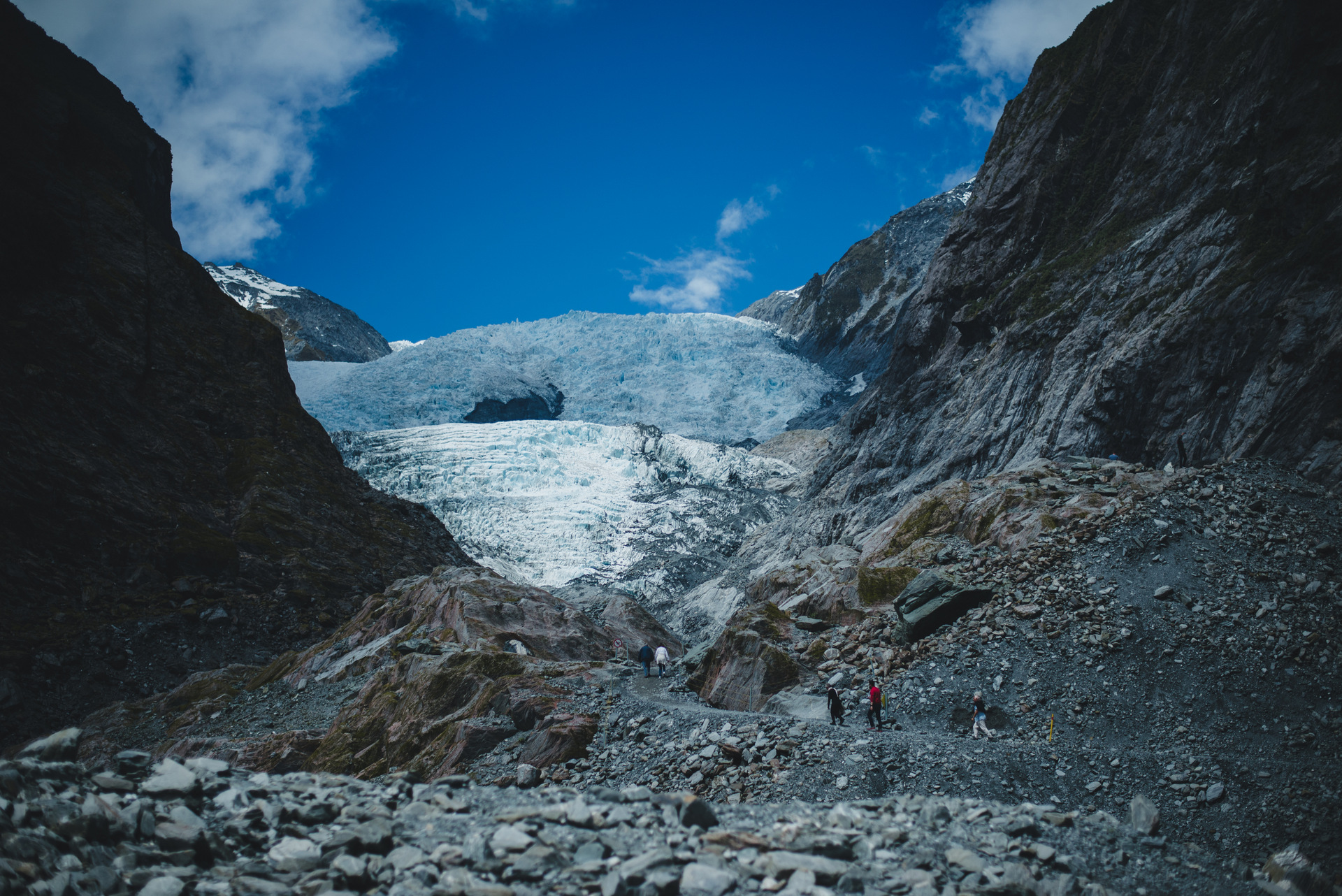 lodowieca foxa nowa zelandia