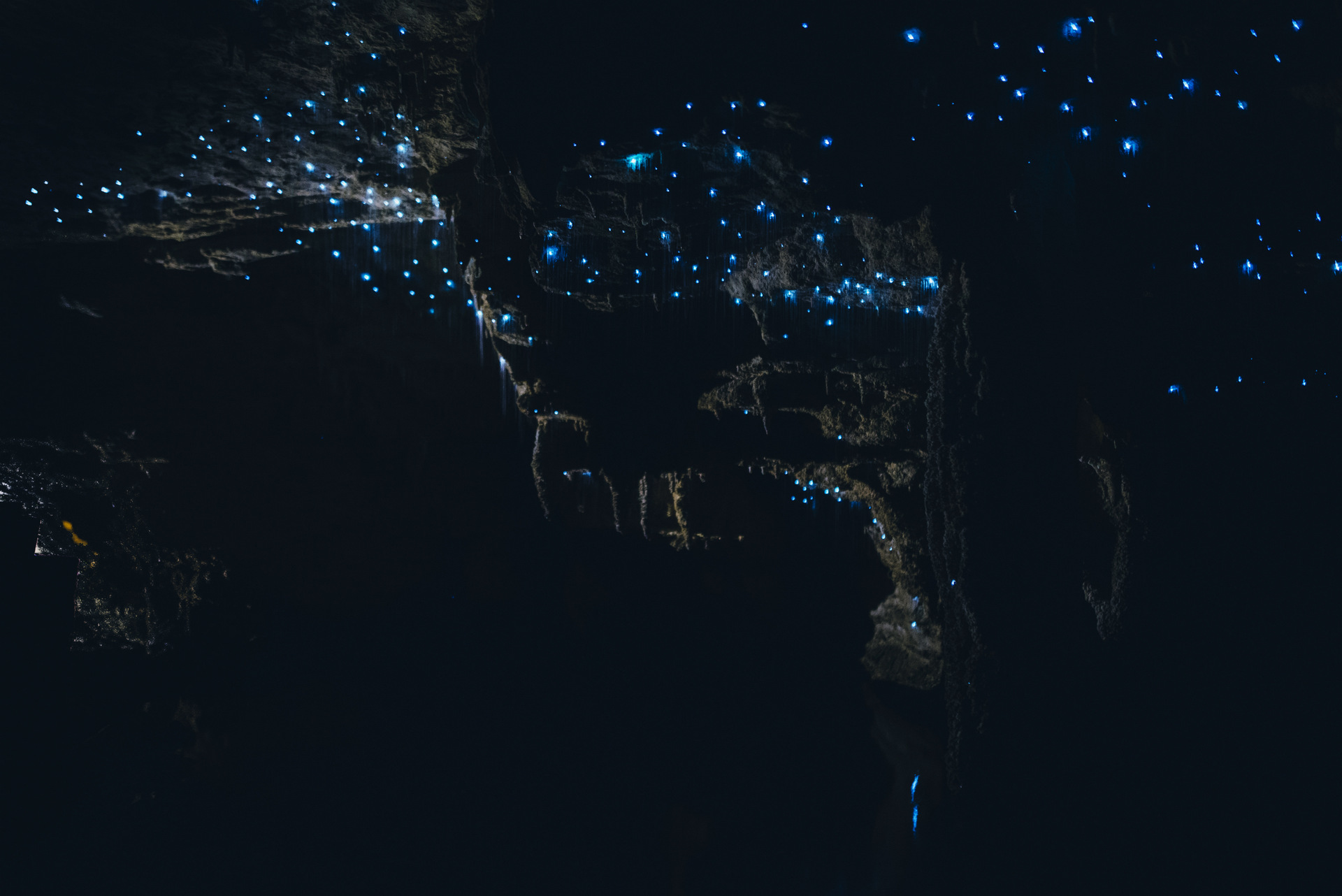 jaskinie waitomo nowa zelandia