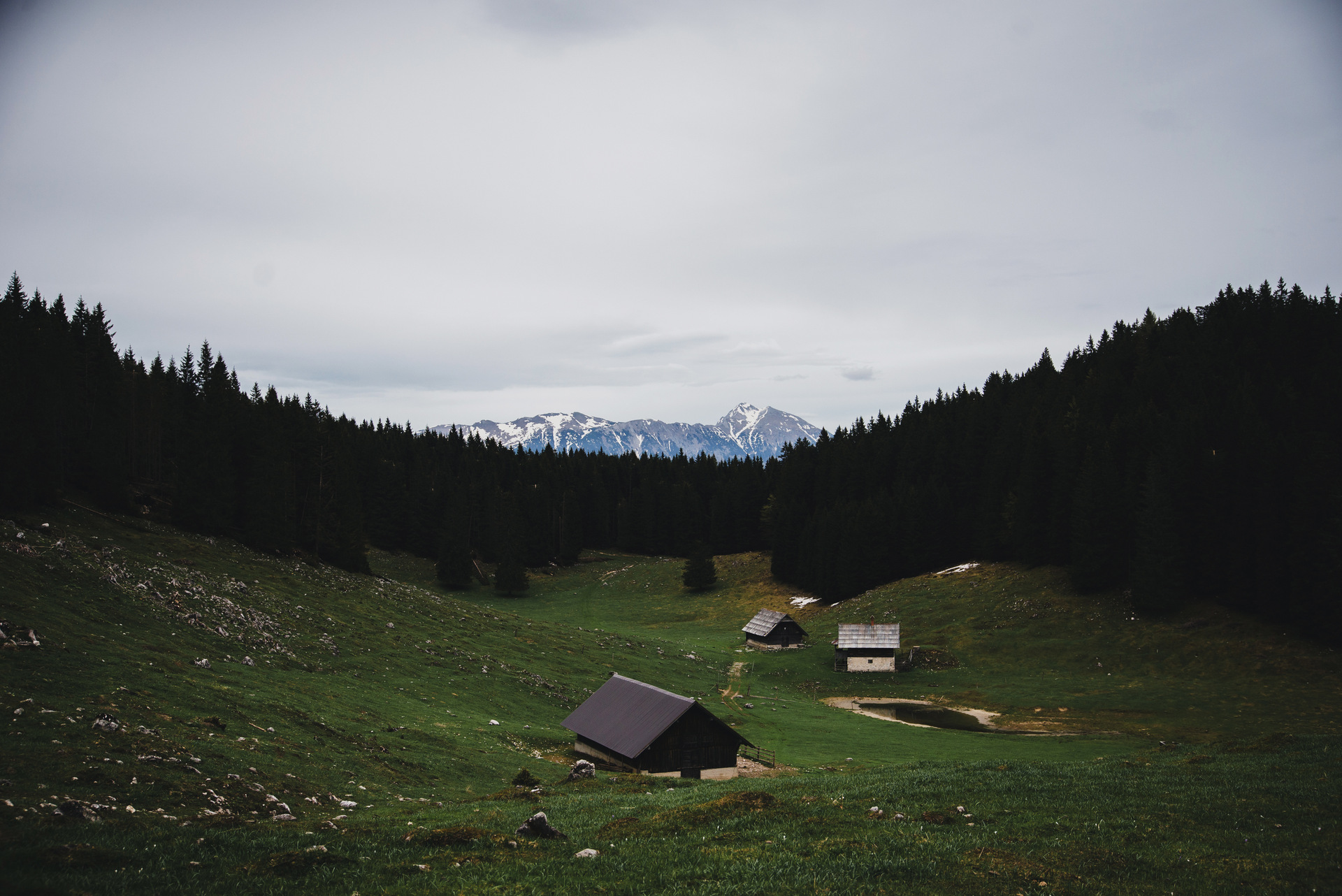 słowenia debela peć polana
