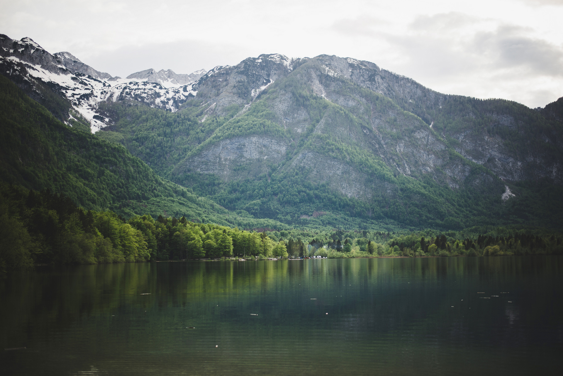jezioro bohinj słowenia