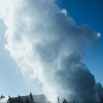 Yellowstone dla żółtodziobów