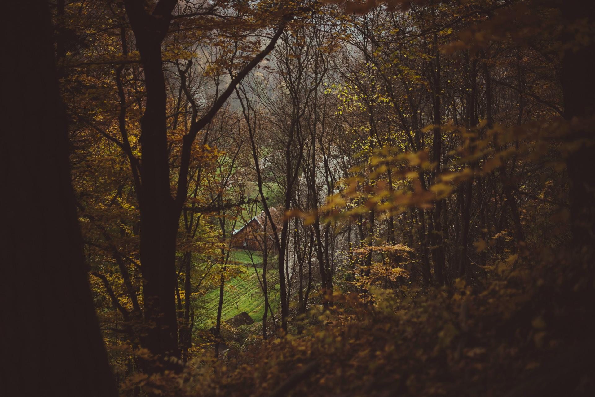 ojcowski park narodowy punkt widokowy