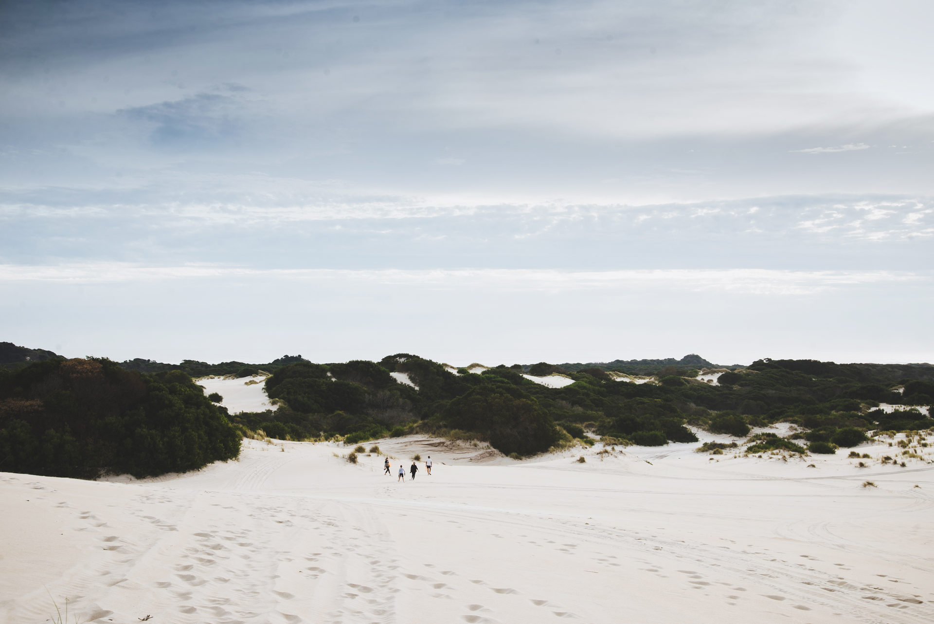 tasmania wydmy